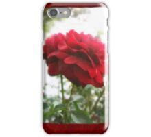 Red Rose with Light 1 Blank P5F0 iPhone Case/Skin