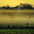 The Colours of a Foggy Sunrise by Mikell Herrick
