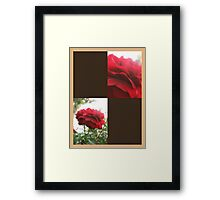 Red Rose with Light 1 Blank Q3F0 Framed Print
