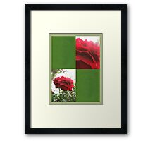 Red Rose with Light 1 Blank Q5F0 Framed Print