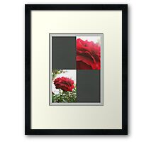 Red Rose with Light 1 Blank Q6F0 Framed Print