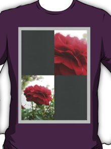 Red Rose with Light 1 Blank Q6F0 T-Shirt