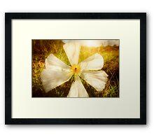 White Bright Framed Print