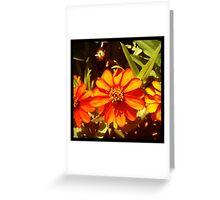 Orange Bonanza Greeting Card