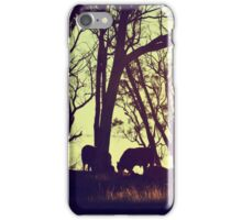 Sunset Cattle  iPhone Case/Skin