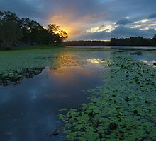 Sunset over Lake Kurwongbah. Queensland. by Ian Hallmond