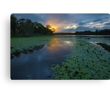 Sunset over Lake Kurwongbah. Queensland. Canvas Print