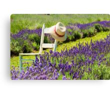 Lavender field Canvas Print