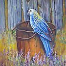 Bird on a bucket  by owen  pointon
