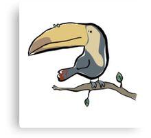 toukan Canvas Print