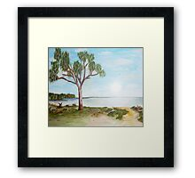 Lake Hindmarsh Framed Print