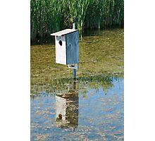 Nesting Box in a Marsh Photographic Print