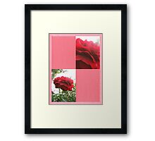 Red Rose with Light 1 Blank Q11F0 Framed Print