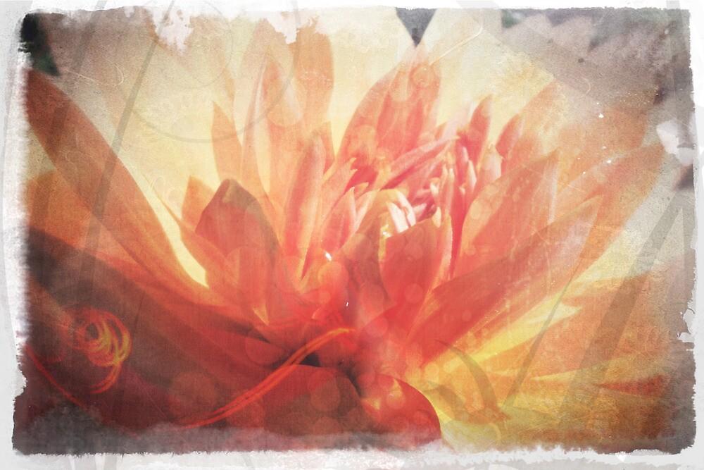 Antique Look Pretty Orange Flower Photograph by pastpresent
