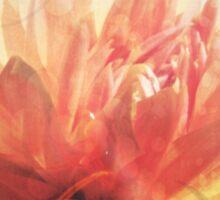 Antique Look Pretty Orange Flower Photograph Sticker