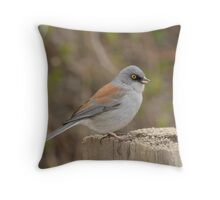 Yellow-eyed Junco Throw Pillow