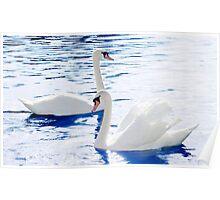 'Symmetric Swans' Poster