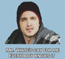 Mr White's Gay For Me by Loominade
