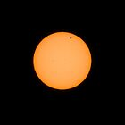 Transit of Venus by Randy  Le'Moine
