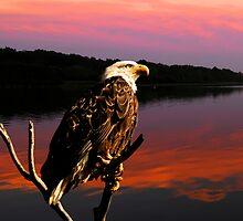EAGLE EYE ON THE WATCH by Randy & Kay Branham