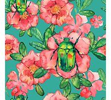 - Wild rose pattern - Photographic Print