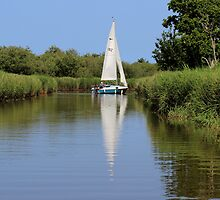 Sailing on the Norfolk Broads by Avril Harris