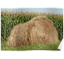 Haybale and Corn Field Poster