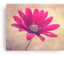Lift Your Head And Shine Canvas Print
