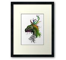 Japan Draco Framed Print