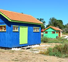 Site ostriecole,  Oyster farming harbour, Oleron,Charente Maritime, France by 7horses