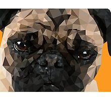 Puggy Pug Photographic Print