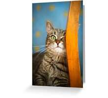Wink Greeting Card