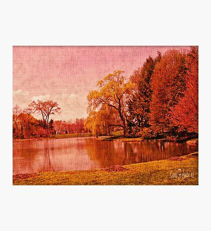 Glory of the Autumn Light Photographic Print