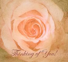 "Romantic Rose ""Thinking of You"" text card by walstraasart"