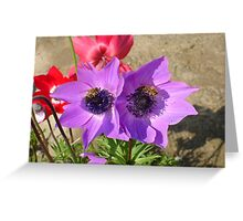 A Pair of Purple Pink Anemones with Honey Bees Greeting Card