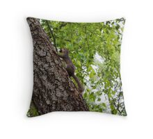 The squirrel protecting his nuts  Throw Pillow