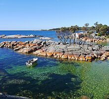 Binalong Bay, Bay of Fires, Tasmania, (2) by Margaret  Hyde