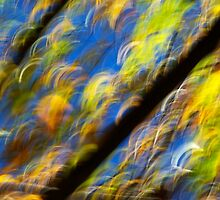 Fall impression no. 68 - 2010 by Joseph Rotindo