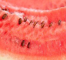 Watermelon by luissantos84
