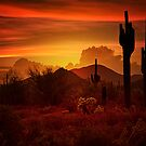 The Essence of the Southwest by Saija  Lehtonen