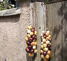 onions tied by Anne Scantlebury