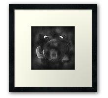 ©DA The Park At Night A Monochromatic Framed Print