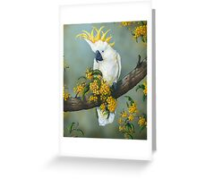 Australian White Cockatoo  Greeting Card