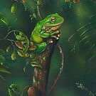 GreenTree Frog . by owen  pointon