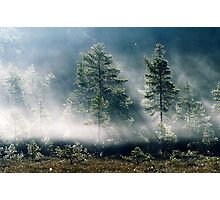 5.9.2013: September Morning II Photographic Print