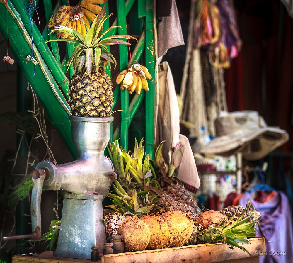 Minced Pineapple by Alan Robert Cooke