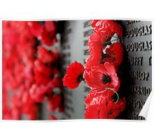 Poppies on the Wall Poster