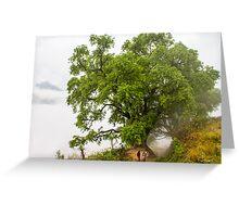 Bandipur Tree Greeting Card