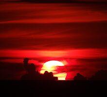 sunfire - fuego del sol by Bernhard Matejka
