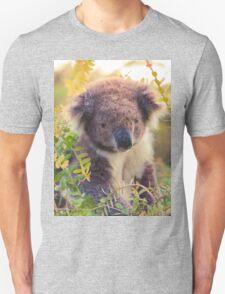 Koala in the Front Yard T-Shirt